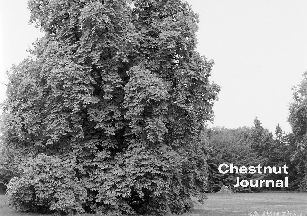 Chestnut Journal